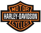 Harley Davidson Auction